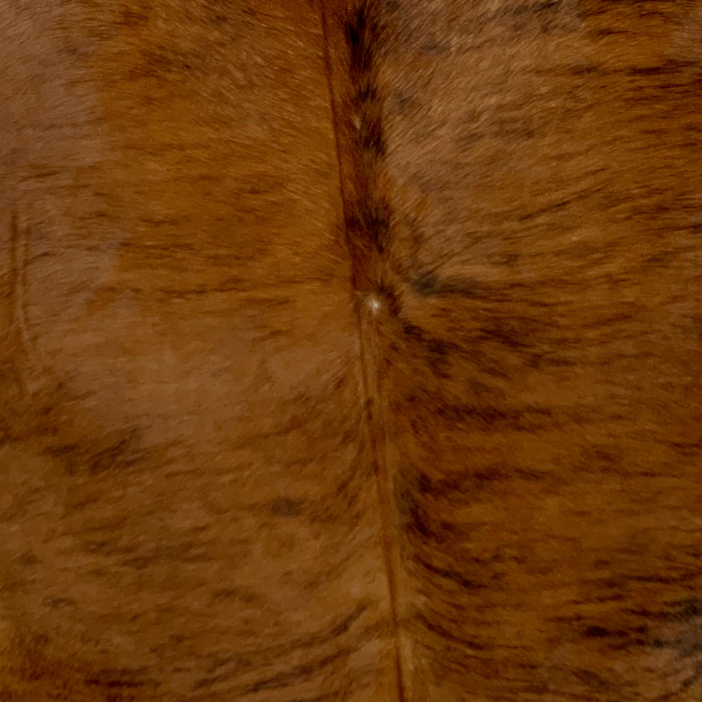Large Brazilian Brown and Black Brindle Cowhide Rug  (BRBR452)