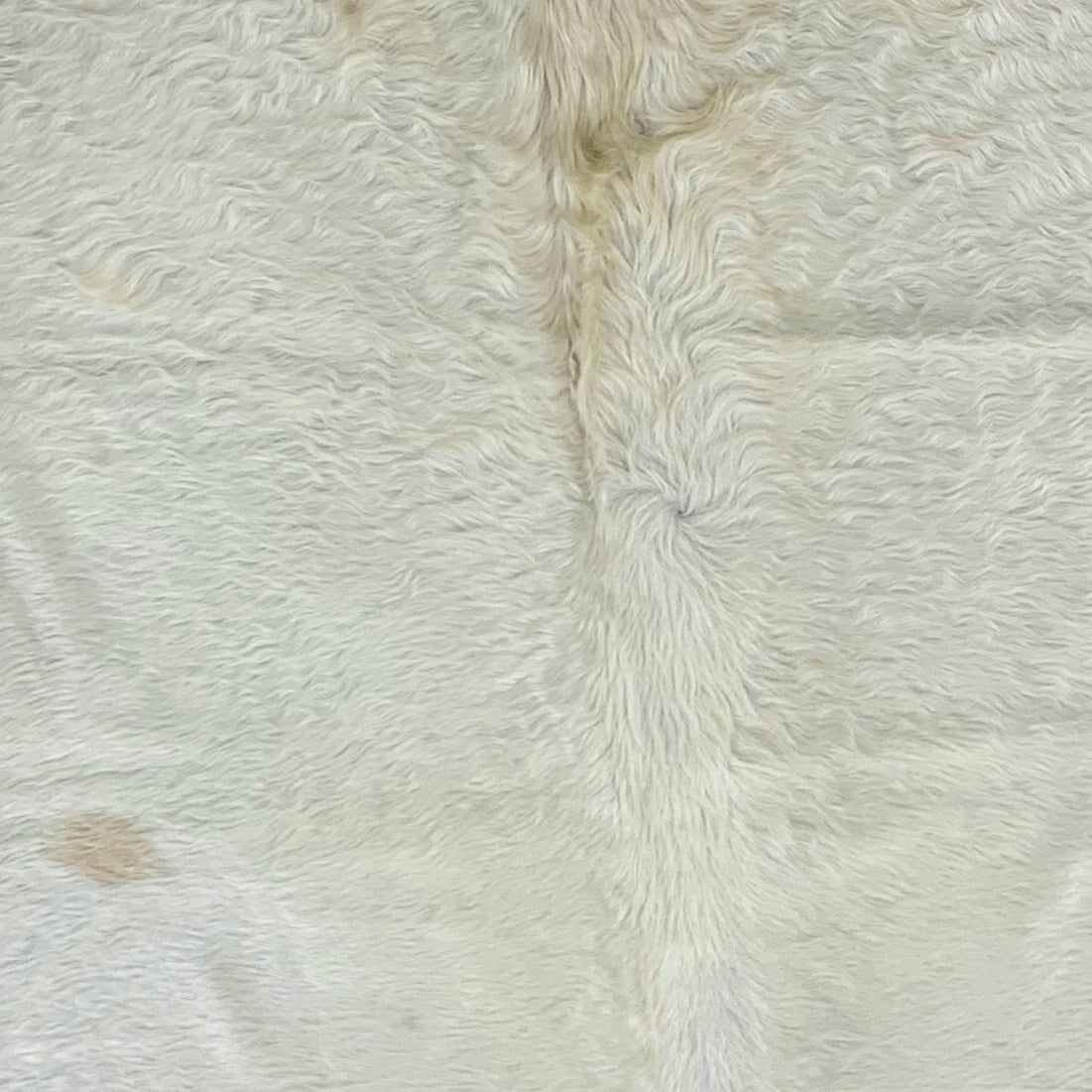XL Brazilian Off-White Cowhide, long hair (BRWT021)