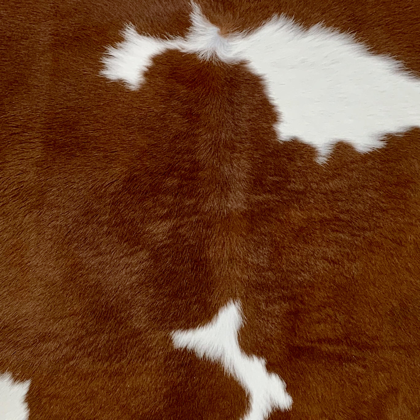 Brown and White Calfskin (CALF229)