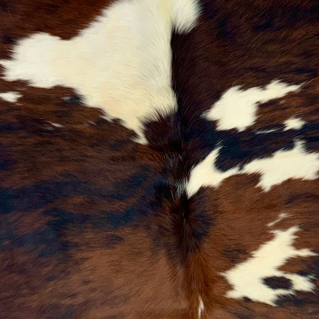 Large Colombian Tricolor Cowhide, brown, off-white, black  (COTR097)
