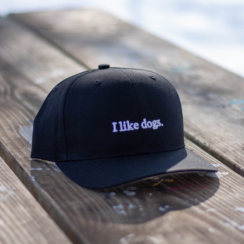 I like dogs. Structured Hat - Black