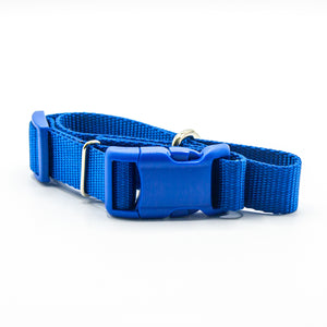 I like humans. Dog Collar - Blue