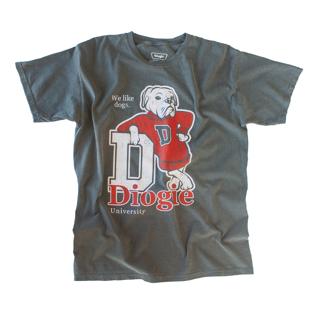 Diogie U T-Shirt - Faded Black