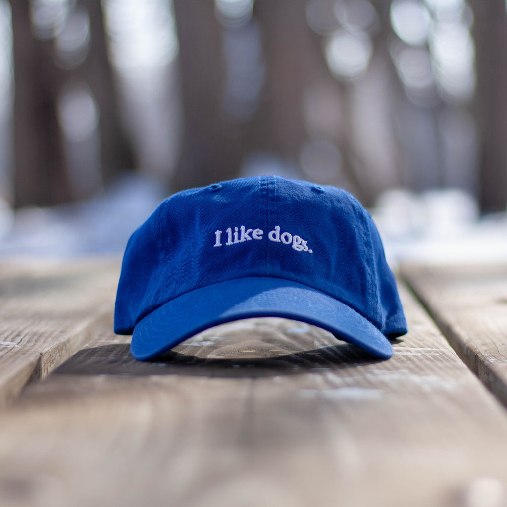 I like dogs. Dad Hat - Royal