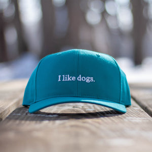 I like dogs. Structured Hat - Teal