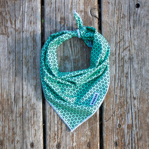Bandana - Teal Terry