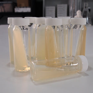 Nutrient Agar Slopes