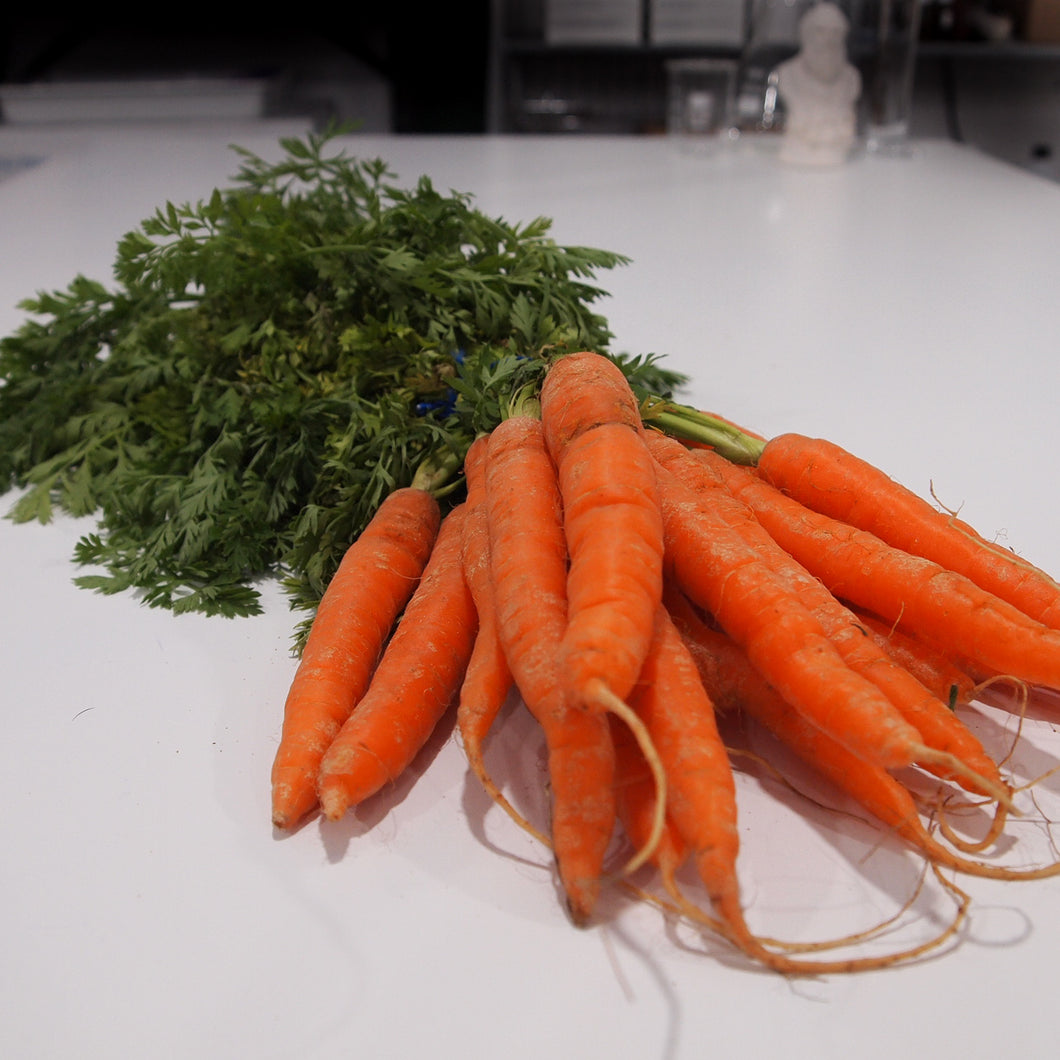 Bunch of Carrots With Leaves