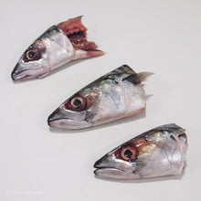 Load image into Gallery viewer, Mackerel Fish Heads