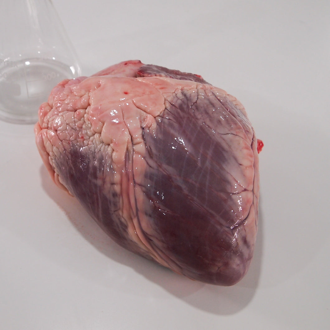 Frozen Cow Heart