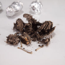 Load image into Gallery viewer, Dissected owl pellet showing bones and skull