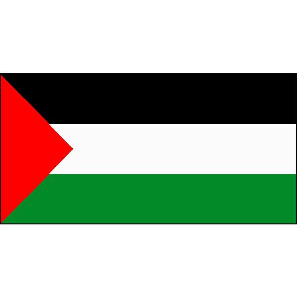 Palestine Flag 1800 x 900mm