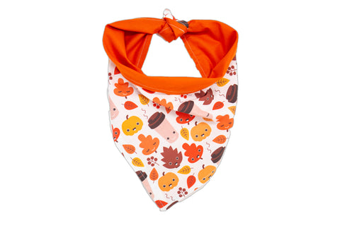 Fall Leaves, Coffee and Pumpkins Pet Bandana