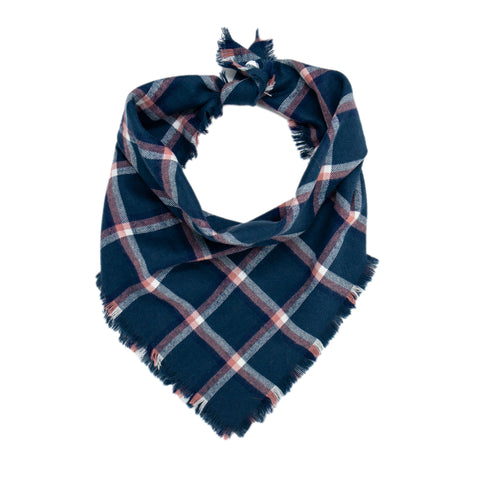 Blue, Pink and White Plaid Scarf