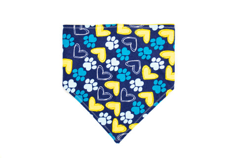 Paws and Hearts Pet Bandana