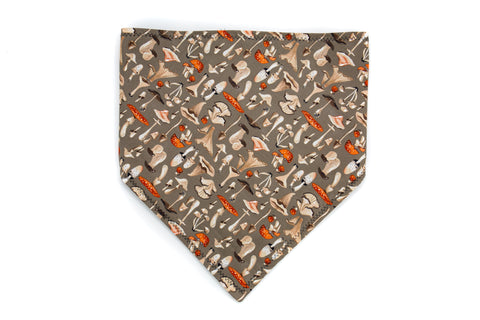 Limited Edition Mushrooms Pet Bandana