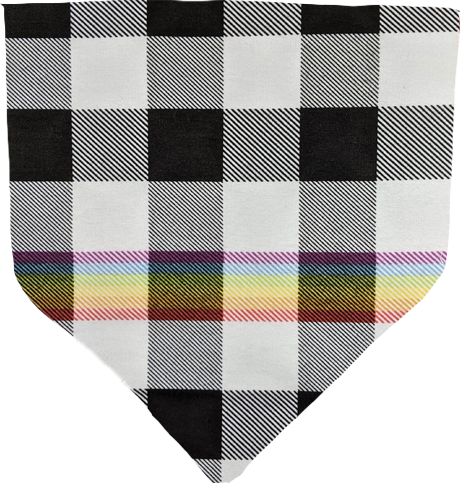 Rainbow Black Plaid- Pet Bandana
