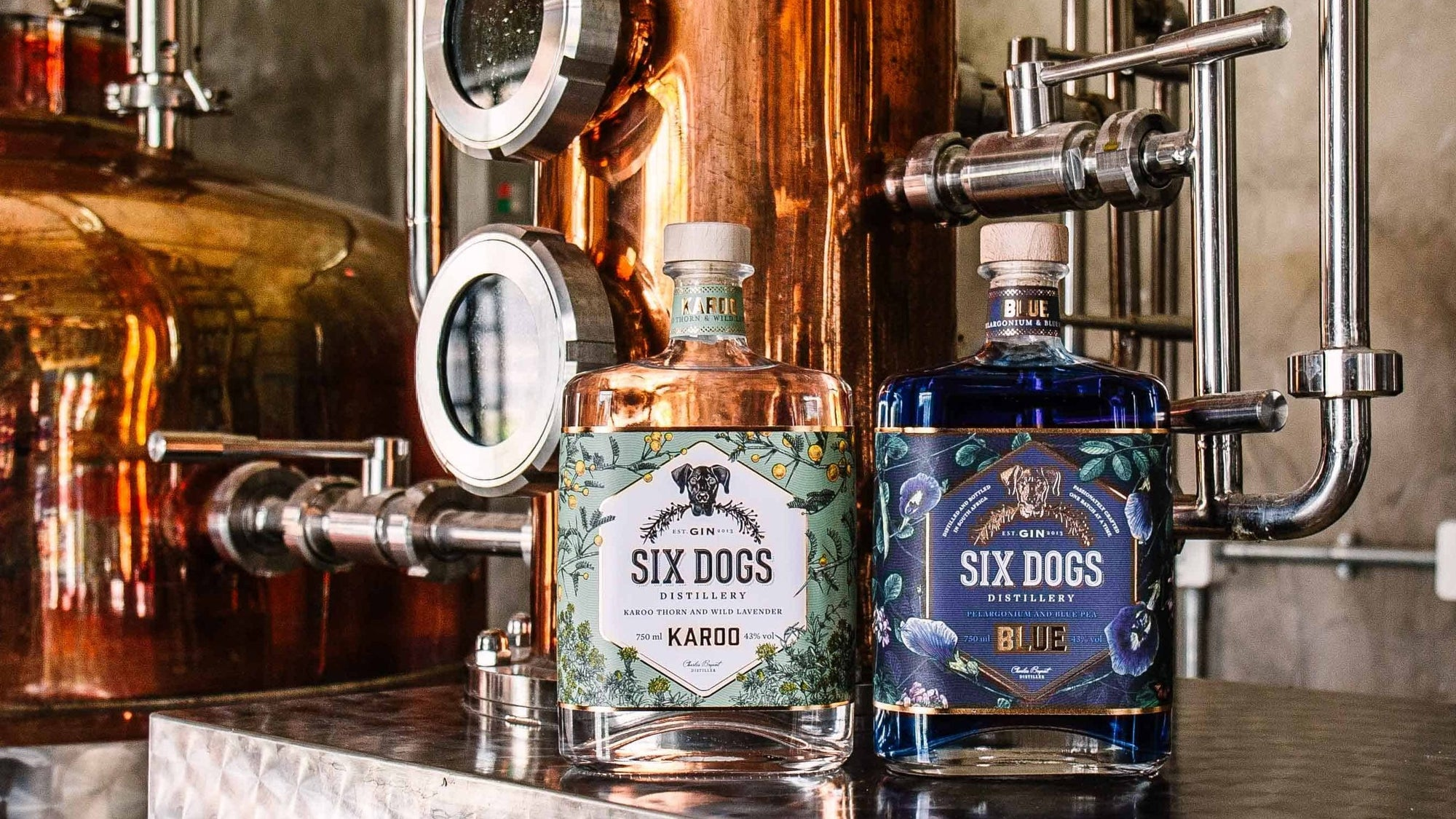 Six Dogs Gin Tasting
