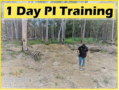 1 DAY SMALL GROUP GOLD PI TRAINING