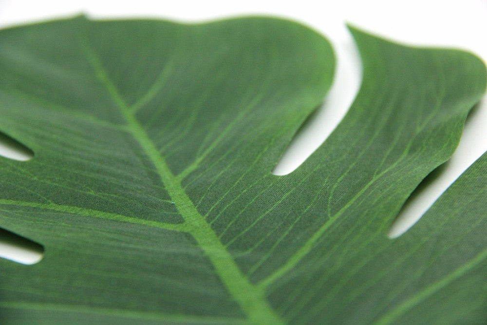Tropical Palm Leaves (Small)
