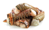 Rock Lobster Tails [ FROZEN ] Pack of x 3