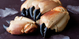 MEDIUM Whole Cooked Crab Claws ( 1 Kg Pack )