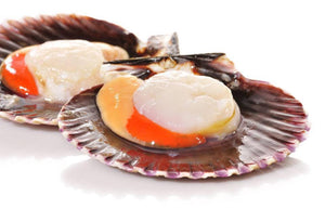 Scallops roe on ( 1kg ) (FROZEN)