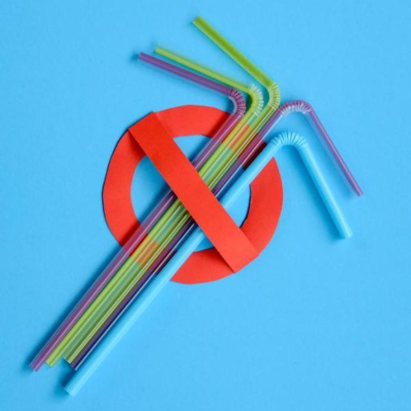 Reusable Eco-Friendly Straws - 24pcs