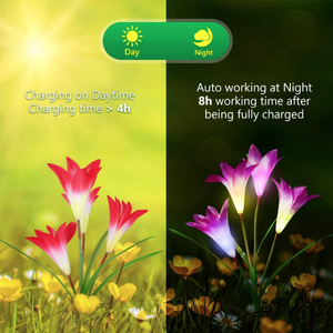 Solar Outdoor Lily LED Lamps