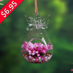 "3$ OFF SPECIAL - ""Guardian Angel"" - Terrarium"