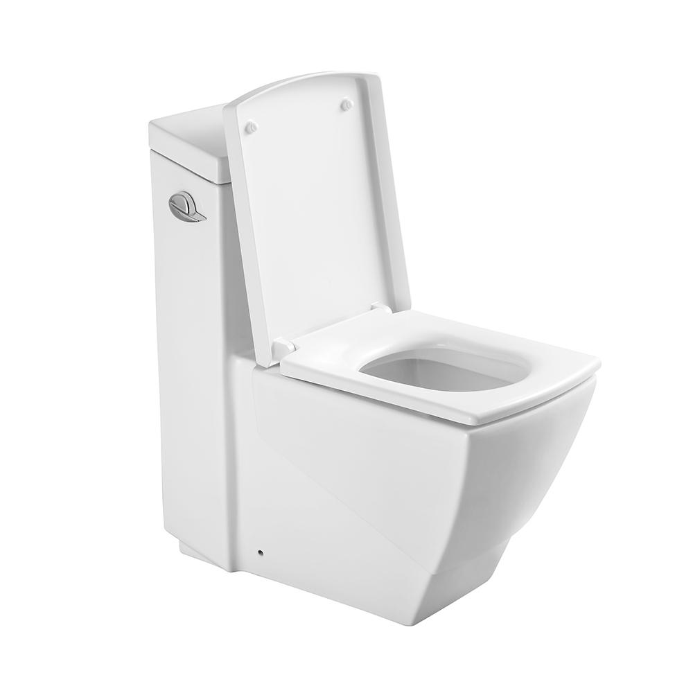 Phenomenal Fresca Apus One Piece Square Toilet W Soft Close Seat Andrewgaddart Wooden Chair Designs For Living Room Andrewgaddartcom