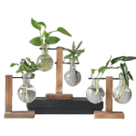 Forbak - Glass Pots And Planters