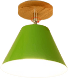 Gatatu Green Flush Mount Ceiling Light Led 65