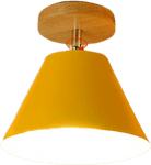 Gatatu Flush Mounted Ceiling Light Orange