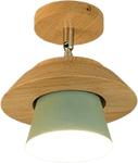 Månenö Flush Mounted Ceiling Light Green