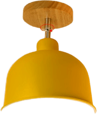 Naturl Orange Flush Mounted Ceiling Fixture 48