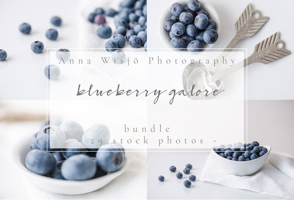 Blueberry Galore