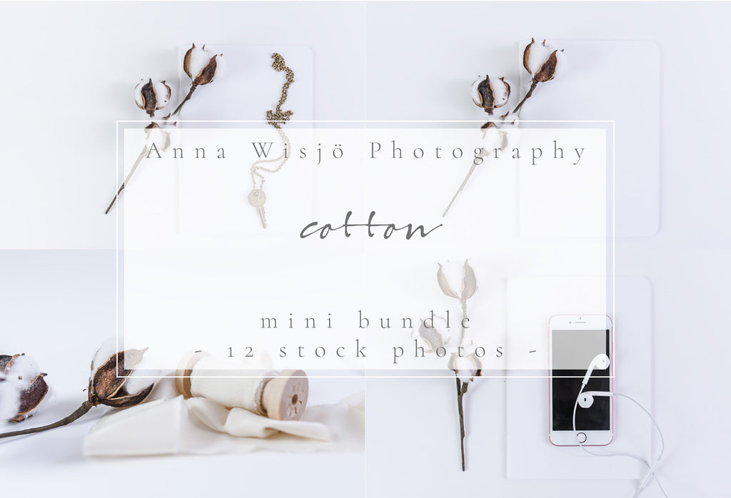 Cotton bundle by Anna Wisjo Stock Photography
