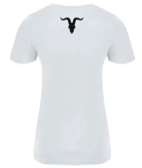Ignite Men's Premium V-Neck Tee