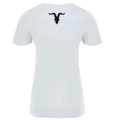 Ignite Ladies' Premium V-Neck Tee