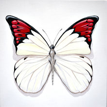 Load image into Gallery viewer, Mini Series - Butterfly 1a