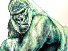 Load image into Gallery viewer, -Rainbow Gorilla