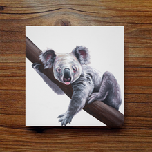 Load image into Gallery viewer, Mini Series - Koala