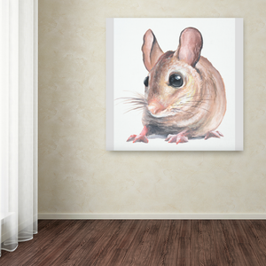 Mini Series - Mouse
