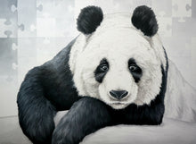 Load image into Gallery viewer, Animal Series- Bored Panda