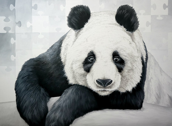 Animal Series- Bored Panda