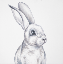 Load image into Gallery viewer, Mini Series - Rabbit