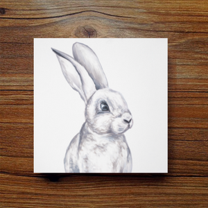 Mini Series - Rabbit