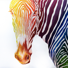 Load image into Gallery viewer, -Rainbow Zebra