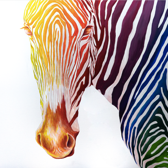 -Rainbow Series- Zebra